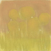 希望の黄 11×11cm